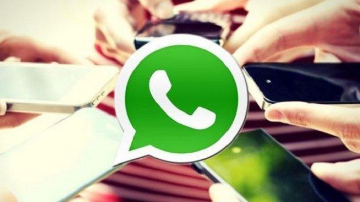 Tahukah Anda, Inilah Cara Mudah Tolak atau Terima Masuk Grup WhatsApp, Ikuti Langkah-langkahnya