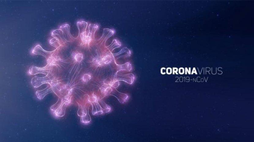 i-virus-corona-9777988899.jpg