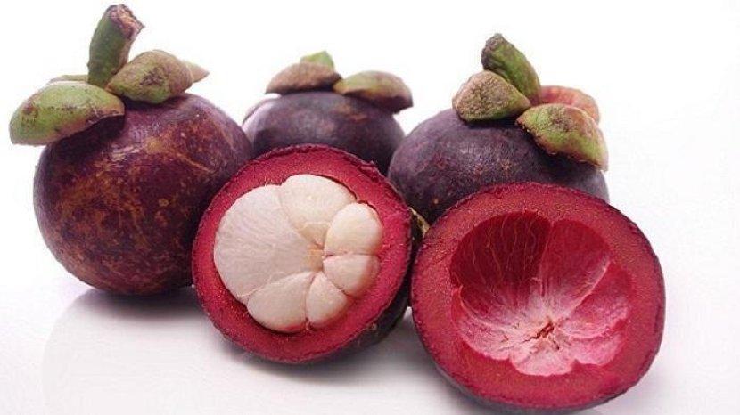 ilustrasi-buah-manggis-bagi-kesehatan-tribunnewscom.jpg