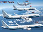 boeing-7373-max_20170619_122047.jpg