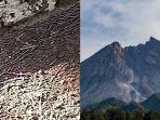 cacing-tanah-dan-gunung-berapi-19042020.jpg