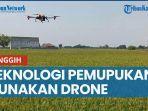 canggih-cukup-20-menit-untuk-1-hektare-indramayu-uji-coba-pemupukan-padi-pakai-drone.jpg