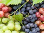 drhealthbenefitscom-via-tribunternate-buah-anggur.jpg