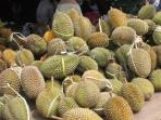 durian_20151227_163325.jpg