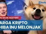 elon-musk-ngetwit-gambar-anjing-harga-kripto-shiba-inu-melonjak.jpg