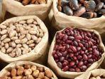 gancino-ilustrasi-kacang-kacangan.jpg