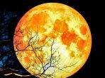 gerhana-bulan-super-blood-moon_20180131_192018.jpg