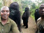 gorila-selfie-kongo.jpg