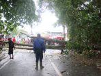 hujan-cukup-deras-disertai-angin-kencang-mengakibatkan-pohon-tumbang-di-jl-markoni.jpg