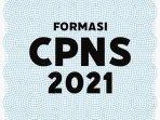 ilustrasi-pengumuman-formasi-cpns-2021-21-juli.jpg