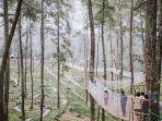 instagram-orchidforestcikole-orchid-forest-cikole.jpg