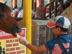 instagrambiestroindonesia-pengunjung-yang-memberi-makan-kuda-di-biestro-indonesia-cafe.jpg