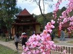 instagramsakurahill_tawangmangu-wisata-sakura-hills.jpg