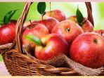 ist-via-tribunwow-buah-apel.jpg