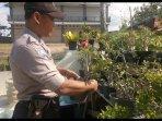 jekky-wahyudi-memiliki-hobi-budidaya-tanaman-bonsai-dalam-setahun-terakhir.jpg
