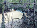 karena-terjaga-secara-baik-lokasi-mangrove-ini.jpg