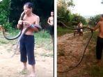 king-kobra-bunuh-pawang-ular-di-satu-dusun-kecamatan-toho-fox.jpg