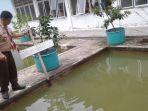 kolam-kembang-biak-ikan-di-smkn-5_20180810_183234.jpg