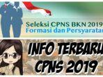 link-formasi-cpns-2019-sscasnbkngoid.jpg