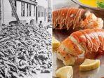 lobster_20170921_100238.jpg
