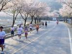 marathon-di-korea_20160207_093020.jpg