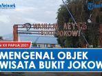 mengenal-objek-wisata-bukit-jokowi-di-kota-jayapura-provinsi-papua-dan-asalmula-namanya.jpg