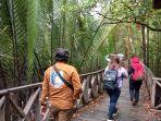 menikmati-pesona-mangrove.jpg