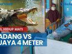 news-video-duel-hidup-mati-dadang-vs-buaya-4-meter-sang-nelayan-selamat-usai-lakukan-ini-kepredator.jpg
