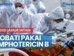 news-video-infeksi-jamur-hitam-serang-india-kabarnya-bisa-diobati-pakai-amphotericin-b.jpg