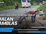 news-video-viral-pengantin-pria-asal-lombok-timur-mirip-presiden-jokowi-mua-awalnya-tak-sadar.jpg