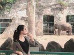 pengunjung-kebun-binatang-ragunan.jpg