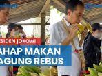 presiden-jokowi-lahap-makan-jagung-rebus-di-pinggir-jalan-sebut-belum-makan-sejak-pagi.jpg
