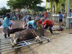 proses-penyembelihan-hewan-kurban-di-masjid-jami-nurul-iman.jpg