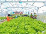 pusat-pelatihan-pertanian-pedesaan-swadaya-p4s-buana-lestari-yang-berlokasi.jpg