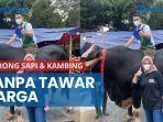 raffi-ahmad-borong-sapi-dan-kambing-untuk-kurban-idul-adha-2021-tanpa-tawar-harga.jpg