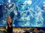 salah-satu-akuarium-di-sea-world-ancol.jpg