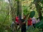 seorang-pria-ditemukan-tewas-gantung-diri-di-salah-satu-pohon-yang-berada-di-lokasi-eks-tambang.jpg