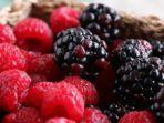 shutterstock-ilustrasi-buah-berries.jpg