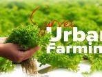 survei-urban-farming-pupuk-kaltim-2.jpg