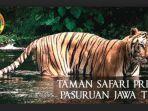 taman-safari-prigen-pasuruan.jpg