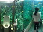 toilet-akuarium.jpg