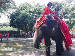 tribunjatimcomaqwamit-thoriq-gajah-di-kebun-binatang-surabaya.jpg