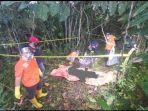 tulang-belulang-julia-ditemukan-di-hutan-pinggir-jalan.jpg