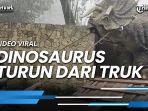 video-viral-seekor-dinosaurus-turun-dari-truk-di-magetan-ini-faktanya.jpg