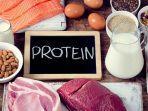 vixendailycom-ilustrasi-makanan-kaya-protein.jpg