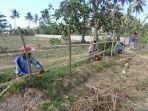 warga-memagar-lahan-di-areal-motogp-di-lombok-tengah-yang-belum-dibebaskan.jpg