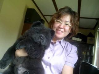 Rp 10 Juta Untuk Anjing Chowchow Tribun Kaltim
