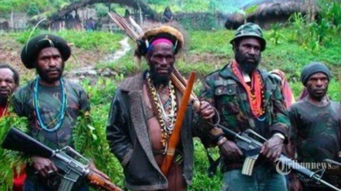 Awalnya Nekad Serang TNI-Polri, Saat Diserang Balik Malah Anggota KKB Papua Ini Tewas Tertembak