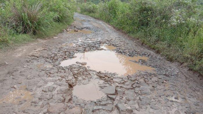 Perbaiki Jalan Rusak Dangka Bangka-Colol-Watunggong, Pemda Matim Pinjam Dana di Bank NTT