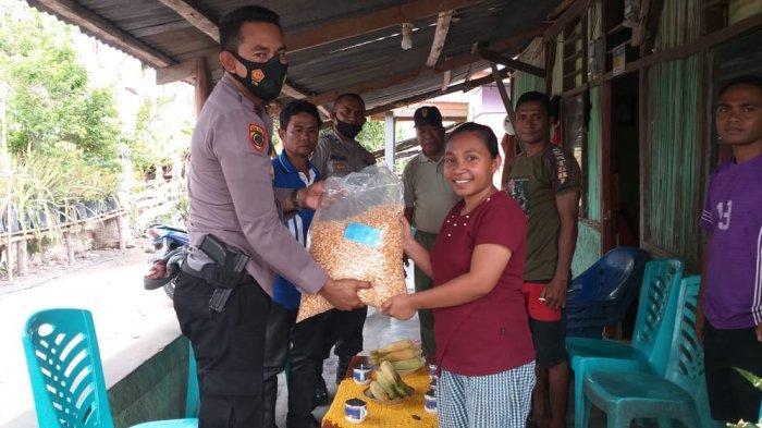 Di Kabupaten Kupang, Warga Naibonat, Dapat Bantuan Bibit Jagung Lamuru dari Kepolisian